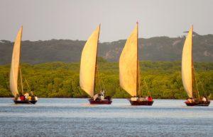 Kiunga Marine National Reserve. (seas4life.)