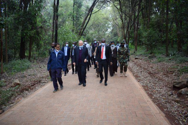 Take a walk at Nairobi Arboretum New Footpath and Ablution Block Worth Sh12 million